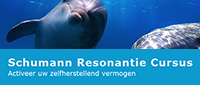 Website Schumann Resonantie Cursus in combinatie met Kundalini